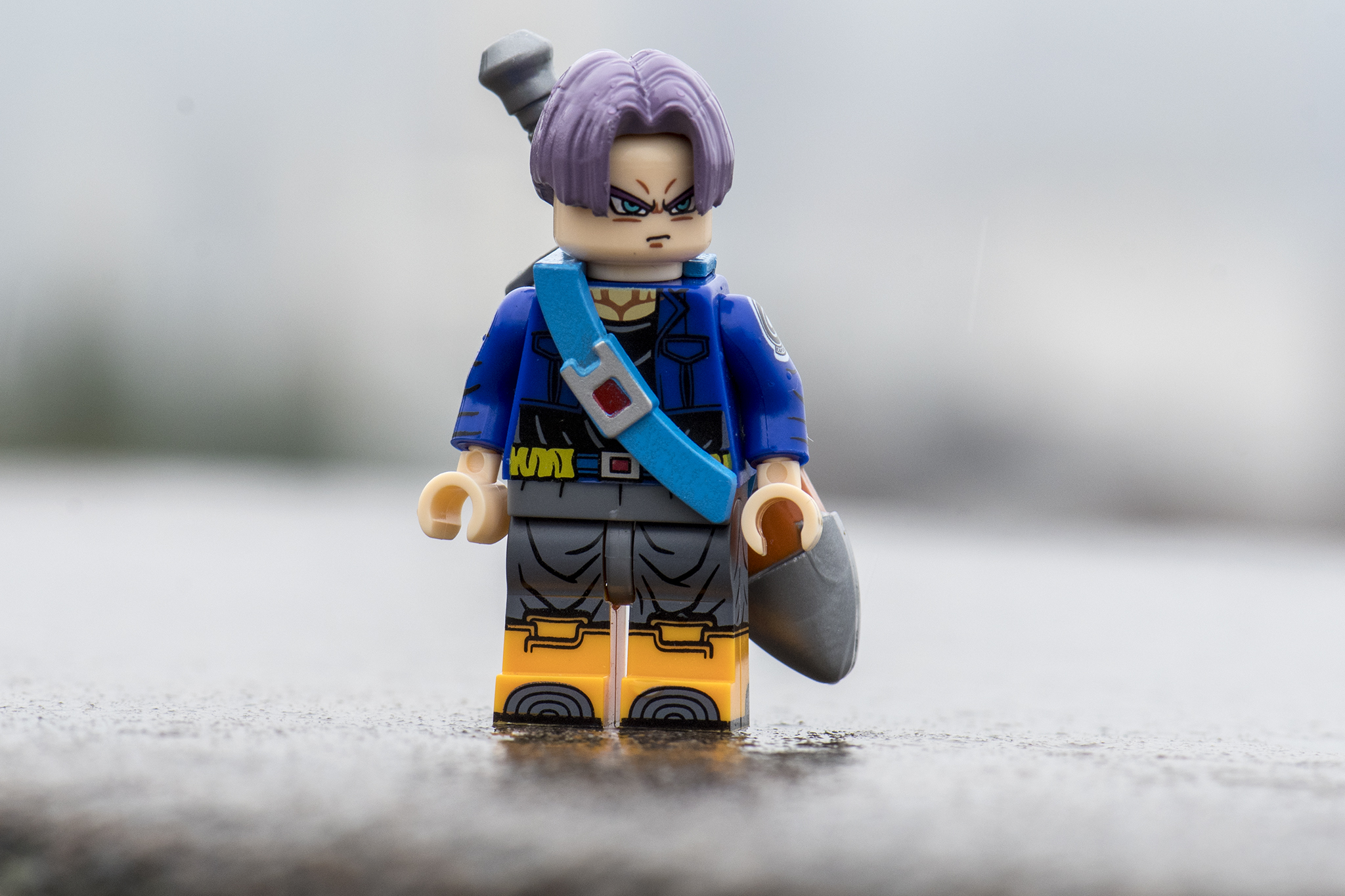 Trunks waiting for the next battle