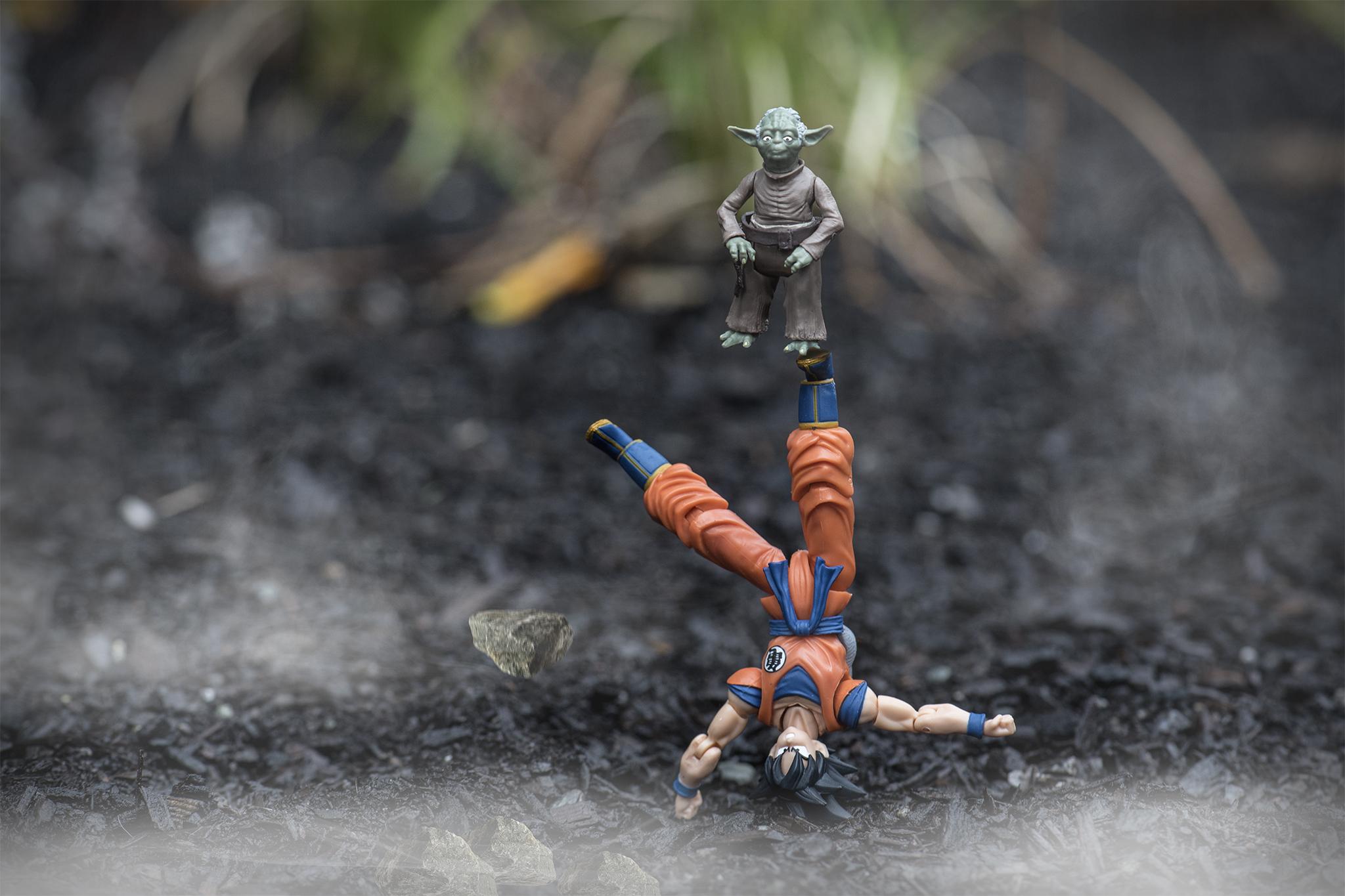 Yoda And Goku